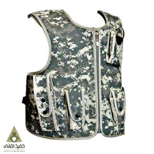 Vest_models_of_the_carriage_2